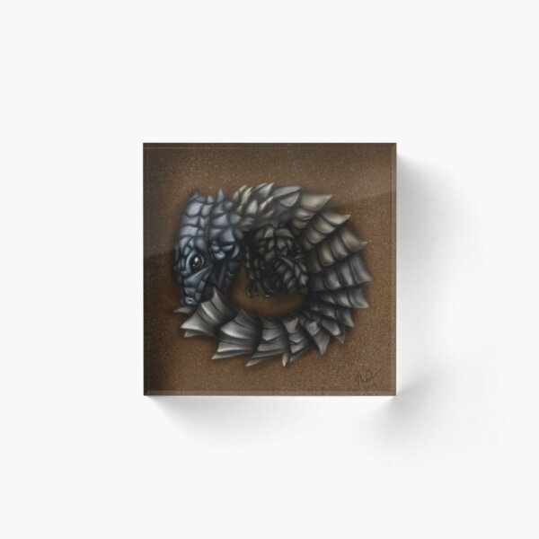 Girdled Armadillo Lizard Acrylic Block