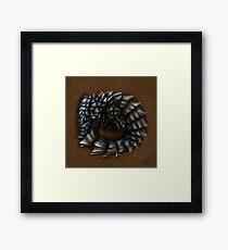 Girdled Armadillo Lizard Framed Print