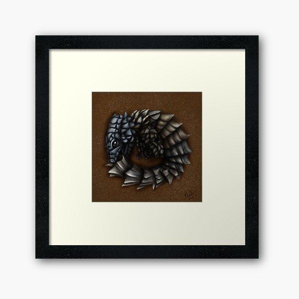 Girdled Armadillo Lizard Framed Art Print