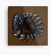 Girdled Armadillo Lizard Metal Print