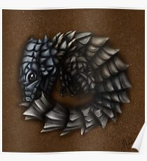 Girdled Armadillo Lizard Poster