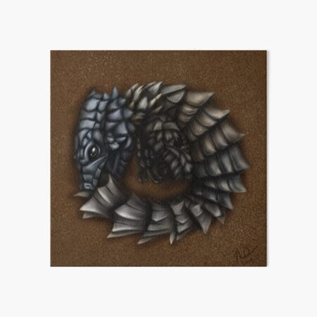 Girdled Armadillo Lizard Art Board Print