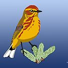 Palm Warbler by BennuBirdy