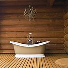 The Ideal Bathub by Memaa