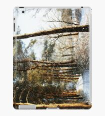 Forest Snow Scene iPad Case/Skin