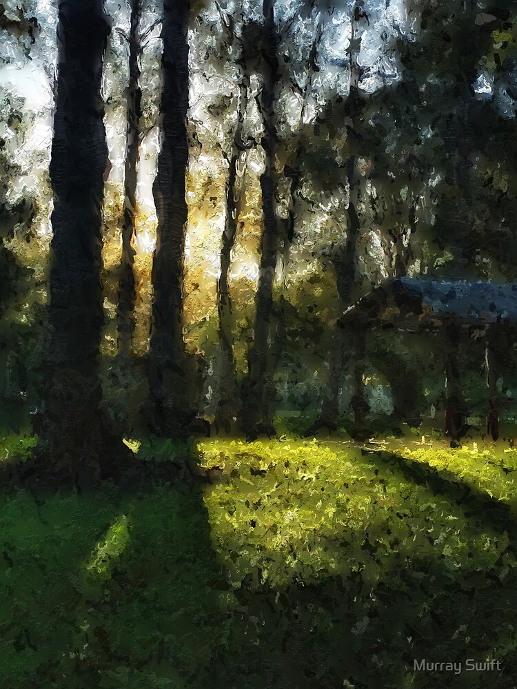 Late afternoon park by Murray Swift
