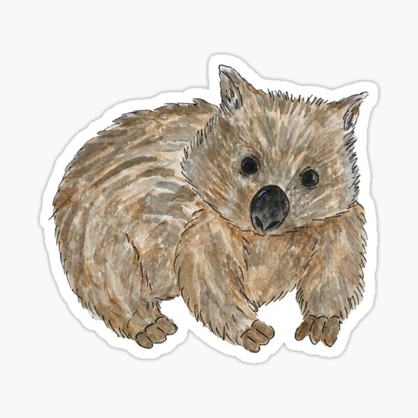 Wombat - Australian Animal painting Sticker