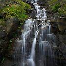 Glacier Park Waterfall by Russ Underwood