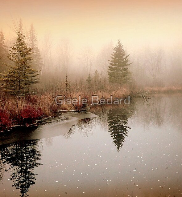 Peaceful by Gisele Bedard