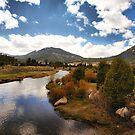 A River runs Through by Barbara  Brown
