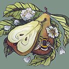 Pears and blossoms attract bumblebee watercolor illustration by Wieskunde