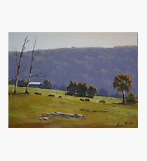 Megalong Morning - Oil Painting Photographic Print