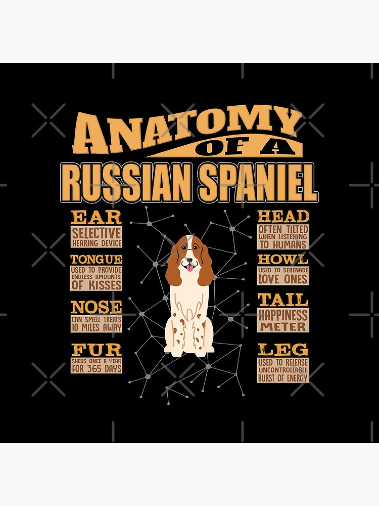Anatomy Of A Russian Spaniel - Funny Russian Spaniel Design by dog-gifts