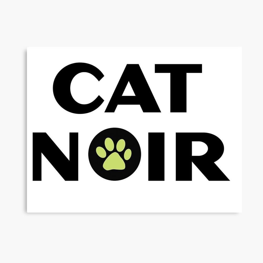 Miraculous Black Cat Noir Leinwanddruck