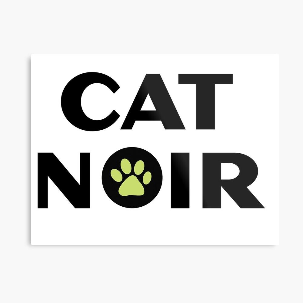 Miraculous Black Cat Noir Metallbild