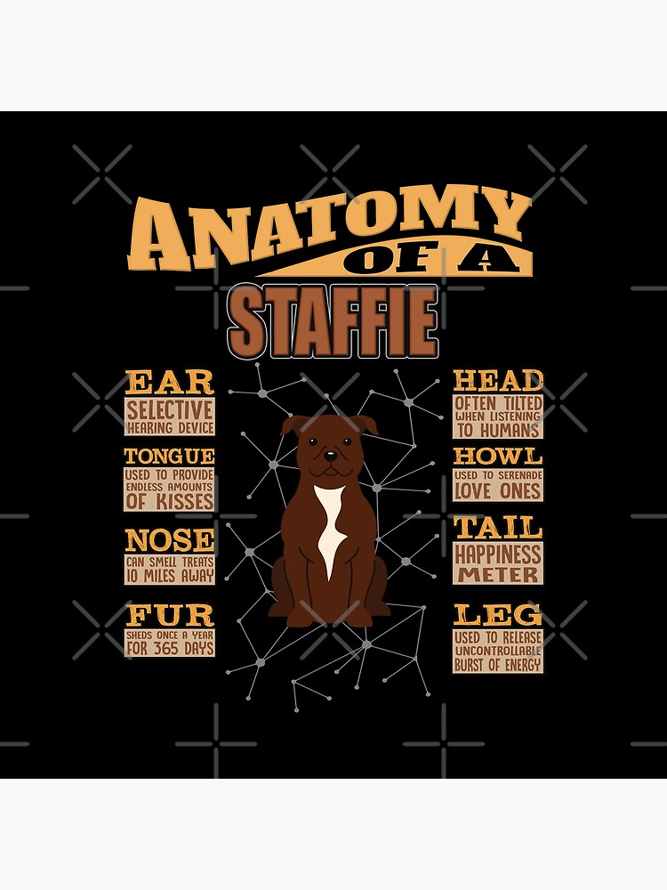 Anatomy Of A Staffordshire Bull Terrier - Funny Staffordshire Bull Terrier Design by dog-gifts