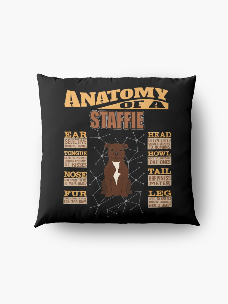 Alternate view of  Anatomy Of A Staffordshire Bull Terrier - Funny Staffordshire Bull Terrier Design Floor Pillow