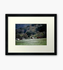 Grazing at the Edge Framed Print