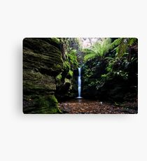 Secret Falls,Cascade,Tasmania  Canvas Print