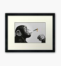Banksy Steez Chimp Monkey Smoking Joint Framed Print