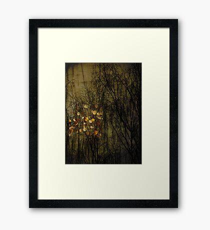 Alone in here Framed Print