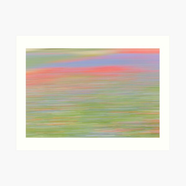 The flowering of Castelluccio Art Print