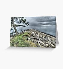 Edith Point North Greeting Card