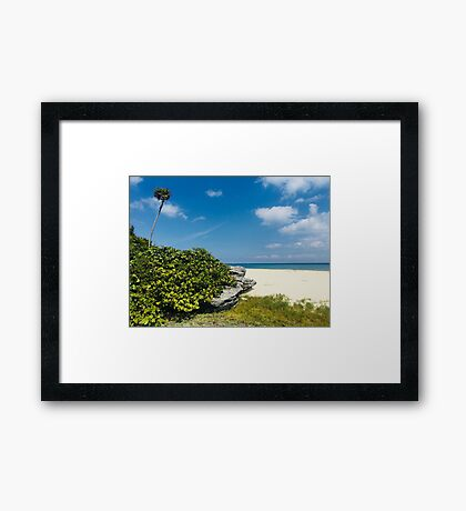 Beach in PlayaCar (Pictures of Mexico) Framed Print