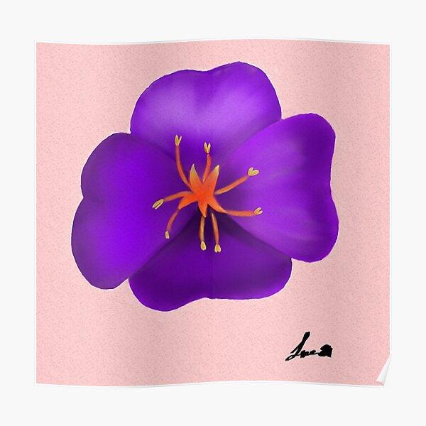 flower primrose violet Poster