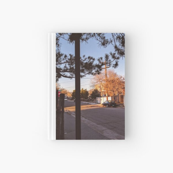Dusky Ray Hardcover Journal