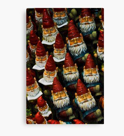 Gnomes Canvas Print