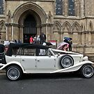 Beauford Beauty by Kevin Bailey