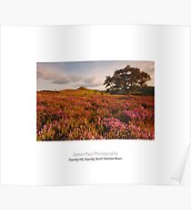 Hawnby Hill, Hawnby, North Yorkshire Moors Poster