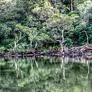 Pittwater Paradise by Jason Ruth