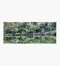 Pittwater Paradise Photographic Print