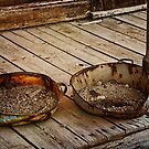 Gold Pans by pat gamwell