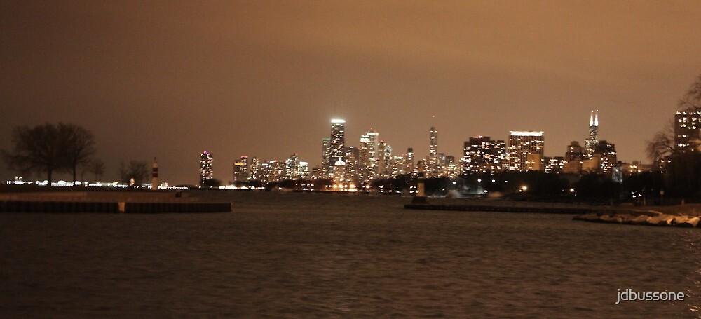 Chicago Skyline - Montrose Harbor by jdbussone