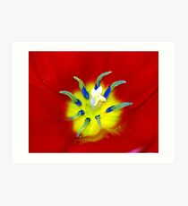 Extreme Tulip Art Print