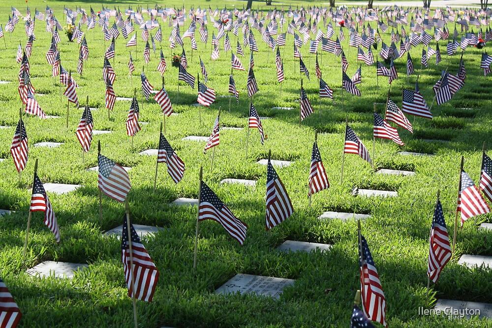 Sea of Fallen Heroes by Ilene Clayton