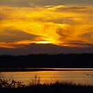 Hagerman Sunset 190 by Brenda Loveless