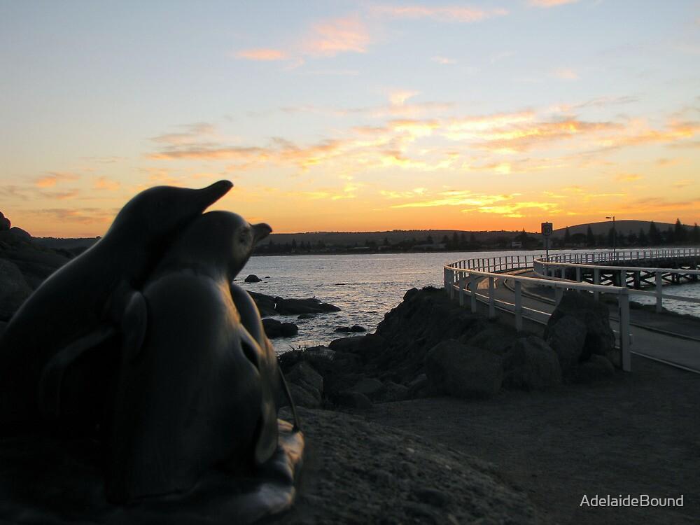 Penguins, Victor Harbor by AdelaideBound