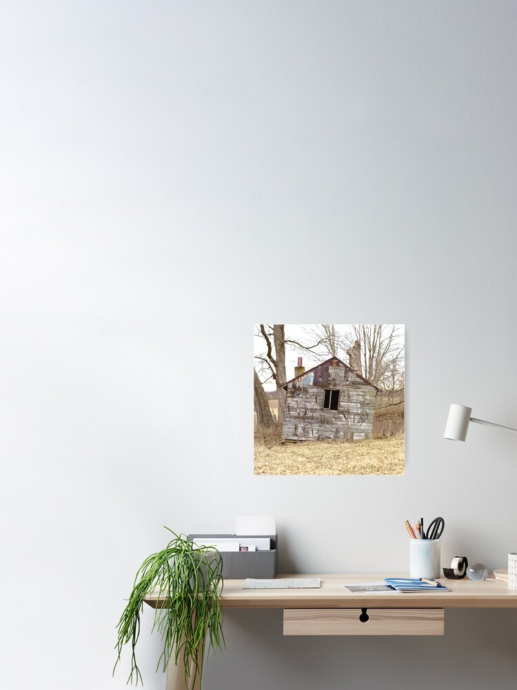 Alternate view of Dilapidated Shack Poster