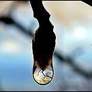 Tear of Winter by Rinaldo Di Battista