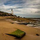 Greenery at Pt. Lonsdale by Lisa Kenny