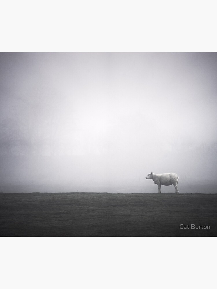 """""""A Moment Of Calm"""" by Cat Burton by cat-burton"""