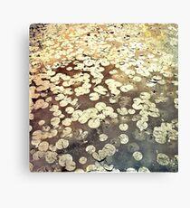 Golden Lily Pads - Art Photography - Nature Decor Canvas Print