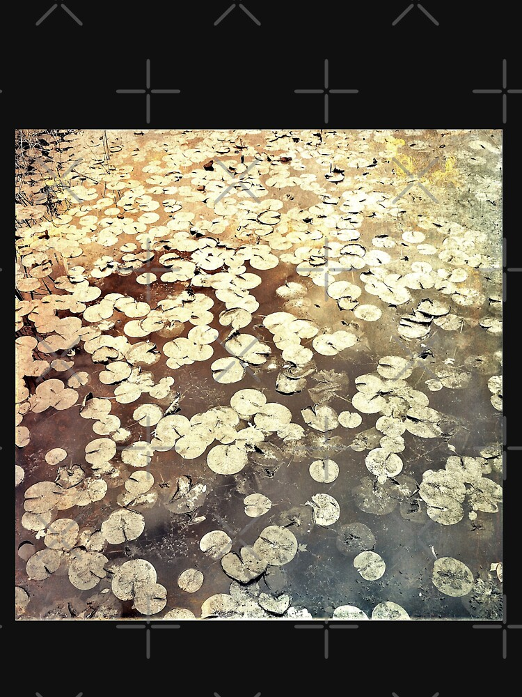 Golden Lily Pads - Art Photography - Nature Decor by OneDayArt