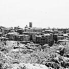 Siena by Marco Vegni