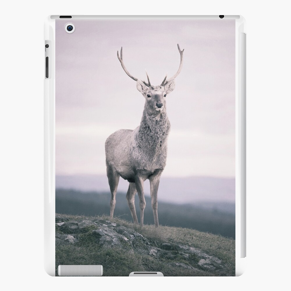 """""""The Prince"""" by Cat Burton iPad Cases & Skins"""