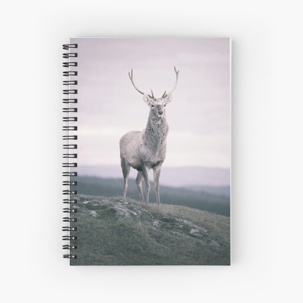 """The Prince"" by Cat Burton Spiral Notebook"